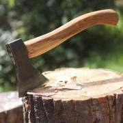robin-wood-axe-in-block-2