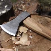robin-wood-axe-on-block-2